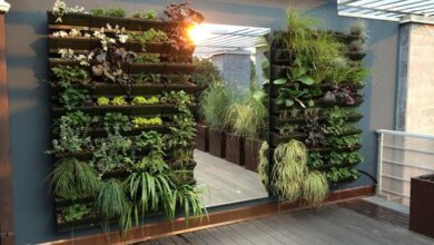 Photo of Orti interni: creare un giardino interno