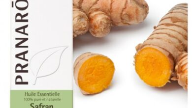 Photo of Curcuma longa safran indien, curcuma, curcuma commun