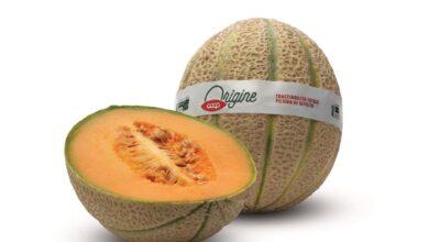 Photo of I meloni