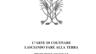 Photo of Scopri la cura di Tetragonia tetragonoide