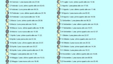 Photo of Calendario agricolo a novembre