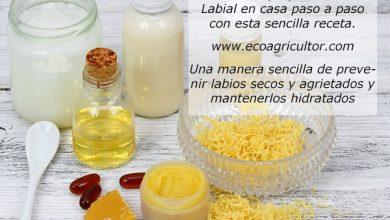 Photo of Balsamo per le labbra fatto in casa: ricetta passo passo per realizzare un balsamo che idrati e prevenga le labbra secche o screpolate