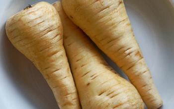 Photo of La pastinaca, un ortaggio dagli ottimi benefici e proprietà nutritive
