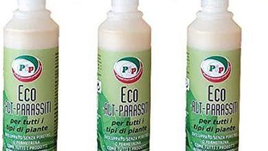 Photo of Piretrine: rimedio ecologico contro i parassiti