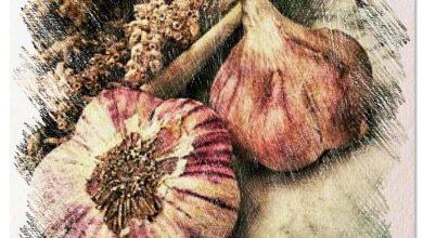 Photo of Impara a piantare l'aglio: come, quando e dove farlo [12 passaggi]